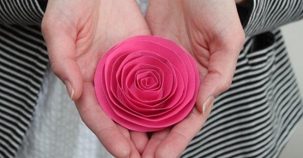 Bước 2: Tạo hình hoa hồng